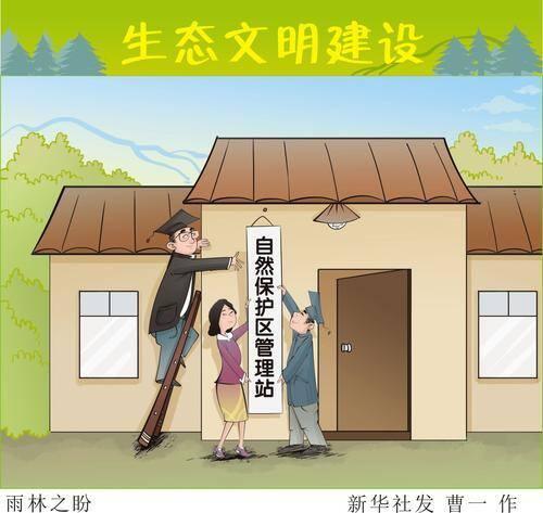 大奖娱乐官方网站_雨林之盼