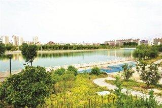 提升城市形象 改善人居环境  聚力打造城乡生态宜居新青山
