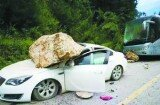 面对巨灾也有保险不能赔 车险等将地震列为免责条款