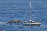 奇迹生还 美国女子海上漂流近半年终获救