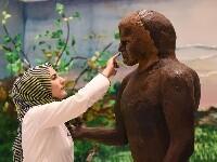 伊斯坦布尔糕点节创造甜蜜艺术品世界
