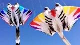2018呼和浩特草原国际风筝节开幕