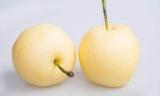 最养人的5种水果,女人经常吃