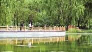 阳光湖美景