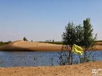 大奖娱乐888_荒漠引入黄河水 沙海育出新绿洲