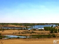 大奖娱乐pt_荒漠引入黄河水 沙海育出新绿洲