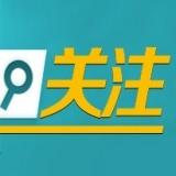 九原區招商引資領跑經濟高質量發展