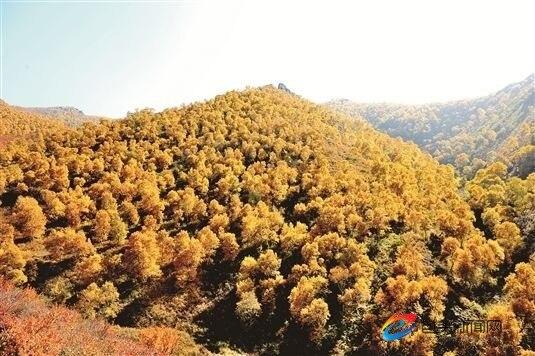 秋染九峰山