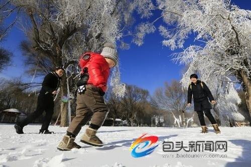 大奖娱乐官方网站_迷人的冰挂