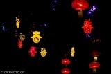 重庆南川:张灯结彩年味浓