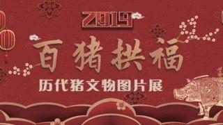 """""""百豬拱福·歷代豬文物圖片展""""邀您新春共話吉祥"""