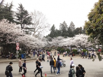 """舍与得:武汉大学的?#22365;?#33457;账单"""""""
