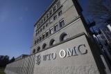 G20贸易和数字经济部长会议呼吁推进世贸组织改革
