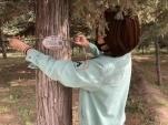 """公园树木有了""""电子身份证""""!"""