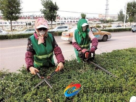 修剪绿植 美化环境