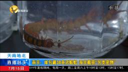 """南京:邮包藏38条活蜈蚣,海关截获""""另类宠物"""""""