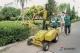 绿篱修剪用上全自动