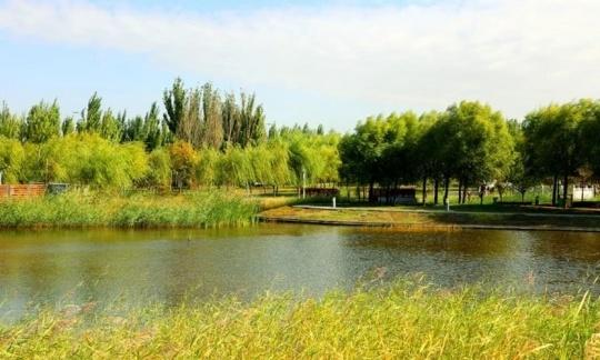 澳门美高梅游戏登陆东河区:绘就生态底色 扮靓绿色颜值