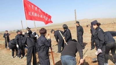 今天,达茂人植树近6000株
