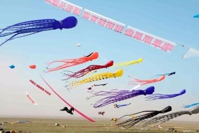【影观达茂】哇!章鱼飞来达茂旗,这届风筝节你在现场吗?