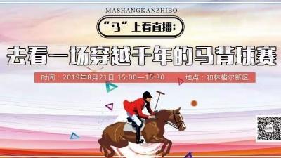 【直播】去看一场穿越千年的马背比赛