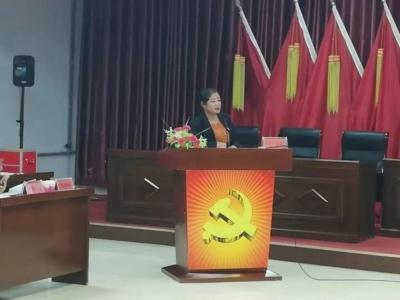百灵庙镇召开2019年度党(总)支部书记抓基层党建述职评议会